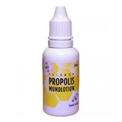Danasan Propolis mundlotion • 20ml.