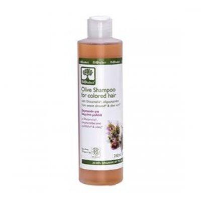 Bioselect Shampoo oliven farvet hår • 200ml.