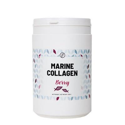 Plent Marine Collagen Berry 300g