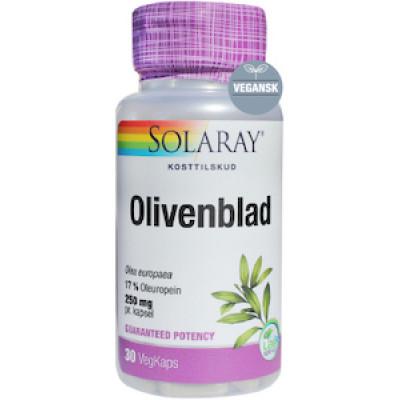 Olivenblad • 30 kaps.